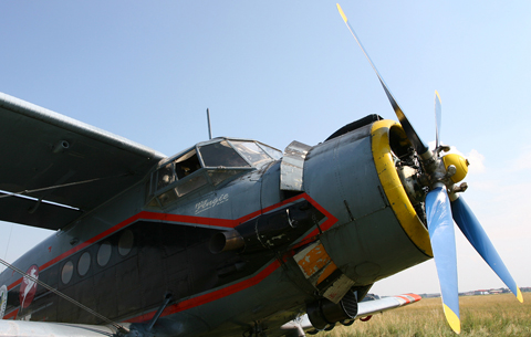 Nose detail. Note the differently-painted lower cowl flaps.
